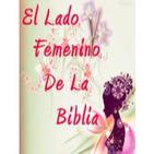 Mujeres de Salomón | Mujeres de la Biblia | Serie El Lado Femenino de la Biblia