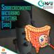 Podcast 28   SOBRECRECIMIENTO BACTERIANO INTESTINAL (SIBO)
