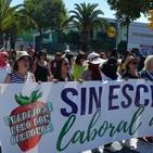 Fresas con Derechos y finca de la Rinconada de Sevilla.