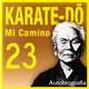 568 | Karate-Do, Mi camino 23x30 (todos los días)