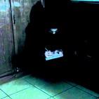 No.19 - El gato sin ojos. #creepypasta
