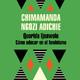 Querida Ijeawele - Chimamanda Ngozi Adichie