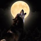 Noche de lobos (21-05-2019)