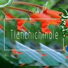 El Ángel de tu Salud - TLANCHICHINOLE I