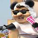 panda show - broma al halcon de la familia michoacana
