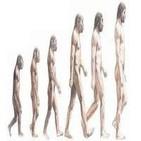 Evolución humana. Del australopithecus al neandertal y Atapuerca con M. Modesto y J.M Bermudez de Castro. 104. LFDLC