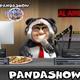 panda show - agarron de gatas
