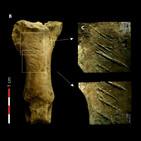 Aparici en Órbita s02e09: Pensamiento simbólico en los neandertales, con Antonio Rodríguez
