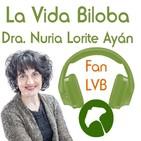 LVB Fans - Beethoven, datos sobre su muerte: una mala suerte de coincidencias, su carácter y sus enfermedades.