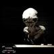 adimensional - Abducción, Tecnología Extraterrestre, lo que dijo el alien E.B.E. 1