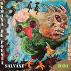 """Programa """"O Lar das Letras"""" [Programa VI] Especial XIII Semana da Poesía Salvaxe de Ferrol [CL Moraima]"""