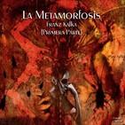 """La Metamorfosis"" de Franz Kafka (Primera Parte)"