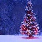 Monograficos zona cero, Navidad y sus misterios