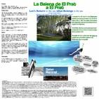 #2 La Balena de El Prat a El Prat per capítols