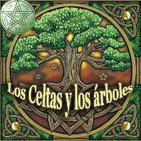 Los Celtas y su relación sagrada con los Árboles- 2 parte