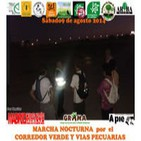 Hilario y la regeneración en los RETAMARES. #MarchaNocturna 9/8/2014