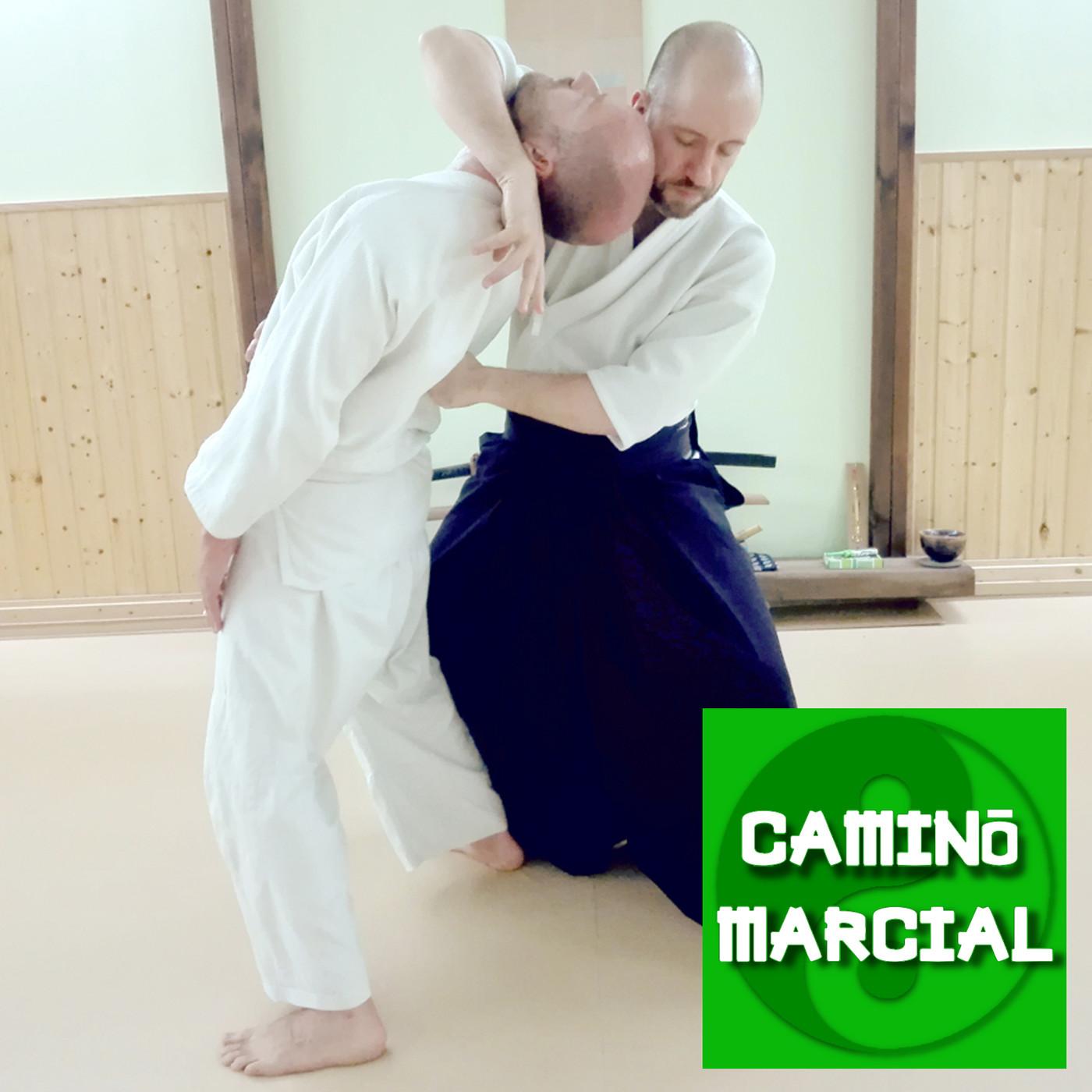 CAMINO MARCIAL nº89 - Xavier Teixidó (Nihon Jujutsu)