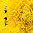 epiphonics: amarillo