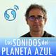 Los Sonidos del Planeta Azul 2482 - Entrevista a RAÚL RODRÍGUEZ, presenta libro-CD 'La Raíz Eléctrica' (07/11/2017)
