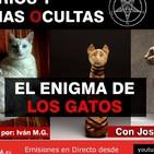 EL ENIGMA DE LOS GATOS - Misterios y Ciencias Ocultas ( Capítulo 10 ) con José Luís Giménez