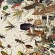 Insectos en la cultura