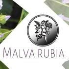 El Ángel de tu Salud - MALVARUBIA