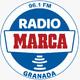 Jornada 37 / Oviedo - Granada