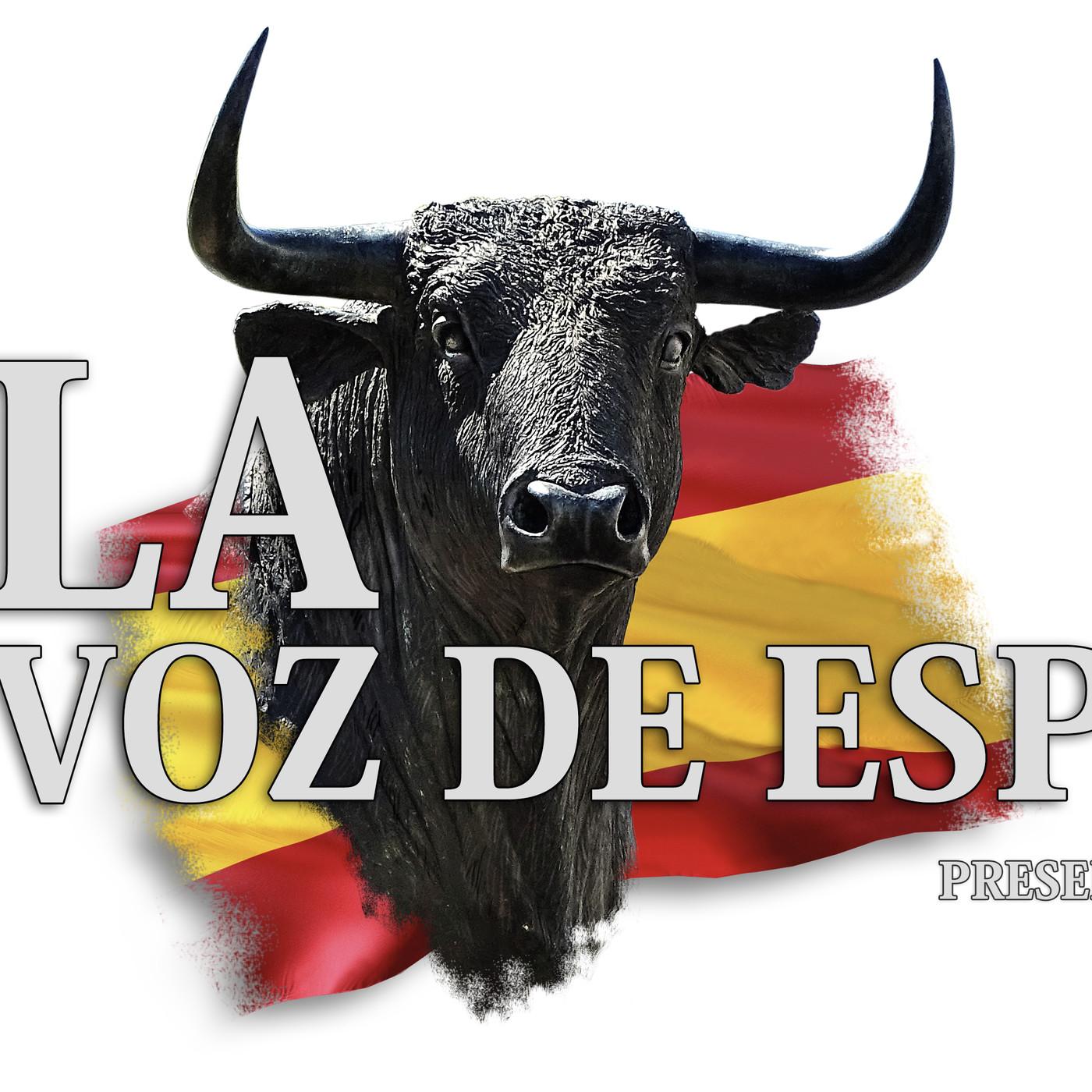 LA VOZ DE ESPAÑA Ed: 254 (30 de junio)