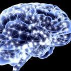 Neurociencia: redes neuronales con Belen Sancristobal y los Sistemas complejos con Andrés Aragoneses. Prog. 213 LFDLC