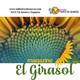 Febrero 18 de 2020 resumen de noticias magazine el girasol