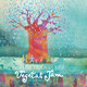 Música Septentrional Prog. 437 Le Plaque, Vegetal Jam