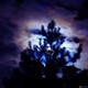 La noche azul; episodio 1x02.
