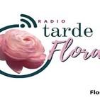 Tarde Floral. 311019 p057