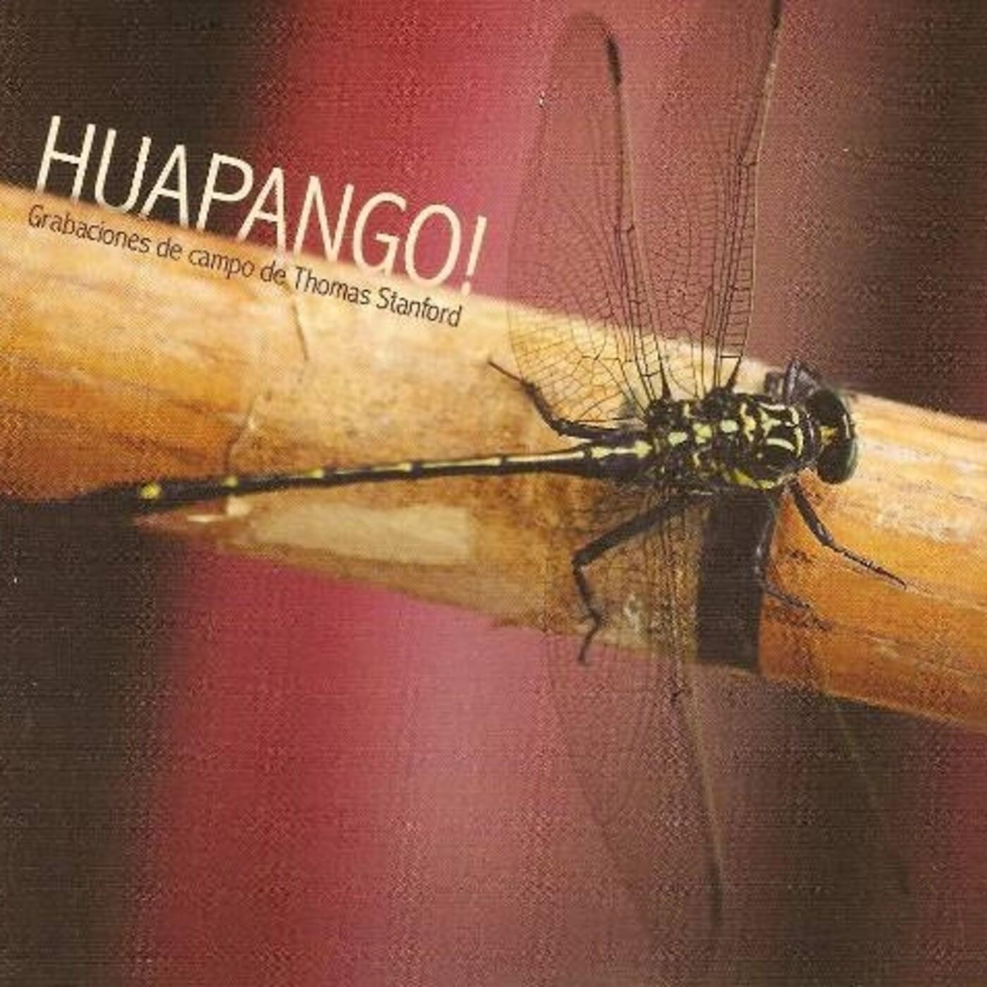 Hupangos Trio Los Cenzontles -Stanford
