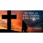 Padre John- Reflexión evangelio madrugada del 12 de Mayo de 2019