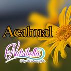 Nutribella - ACAHUAL