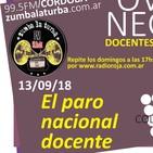 El paro nacional docente - OVEJAS NEGRAS