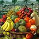 Memoria de la habana 151 frutas n la mÚsica