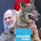 Entrevista a Carlos Sanz en Sintonía Natura - Novelda Radio (23/10/2018)