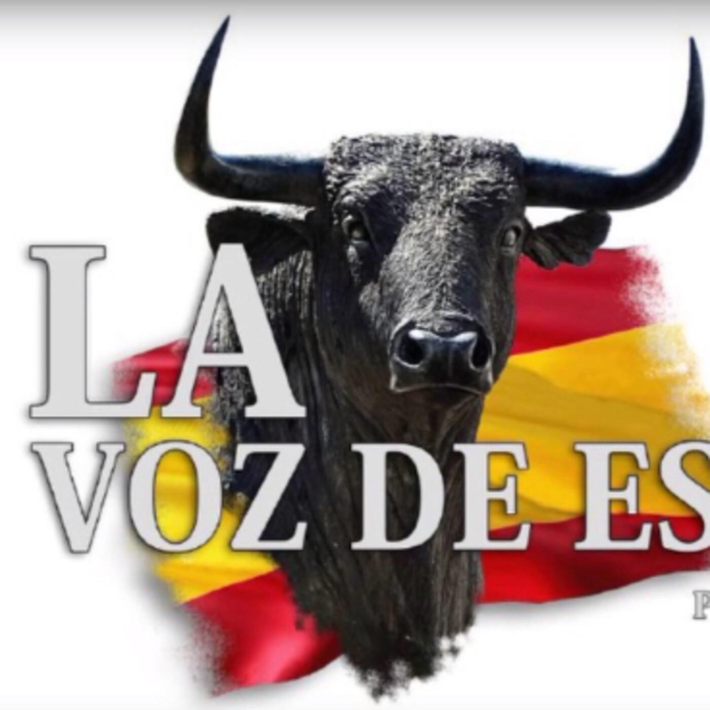 LA VOZ DE ESPAÑA Ed: 253 (28 de Junio)