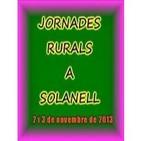 """El arte Románico"" - Félix Rodrigo Mora, en Jornadas Rurales de Solanell"