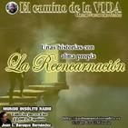 6x1 P81 Reencarnación
