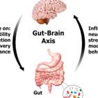 Episodio 15. Si tu intestino no está bien, no esperes tener un buen estado de salud.