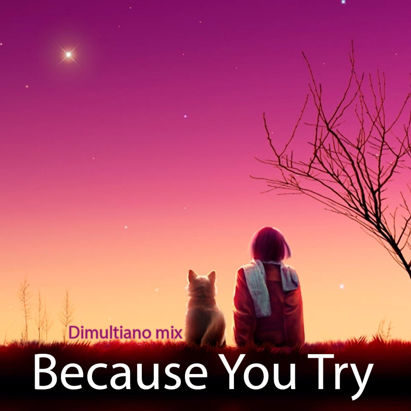Dimultiano mix - Because you Try