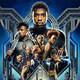 Ningú no és perfecte 17x24 - Black Panther