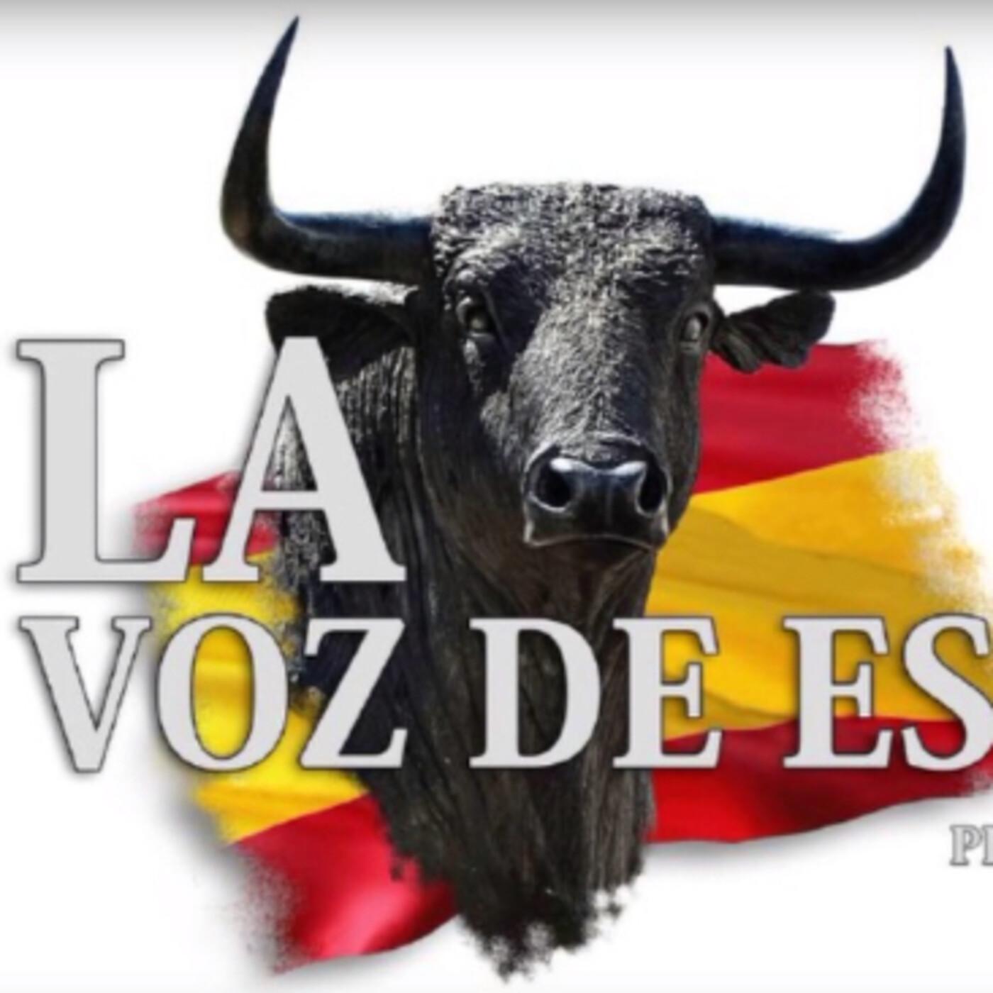 LA VOZ DE ESPAÑA Ed: 215 (22 de Abril)