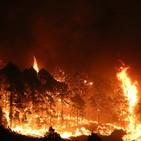 La Palma inicia la campaña contra incendios, el comportamiento ciudadano, imprescindible.