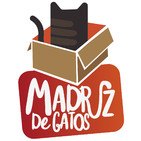 Madriz De Gatos (Un Madriz de cine) 02 - Conde Duque