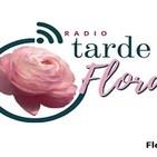 Tarde Floral. 0711201919 p0587