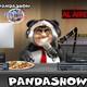 Panda Show - pelea de gatas